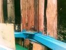 Ласточкино гнездо на крыльце дома