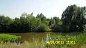 На Рязанщине... Река Вёрда